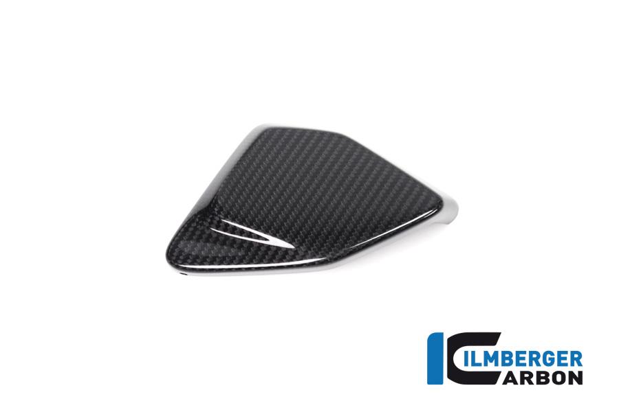 Abdeckung ESA Box Carbon für BMW R 1250 GS ab 2019