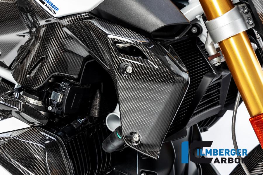 Wasserkühlerabdeckung rechts Carbon für BMW R 1250 R (LC) 2019